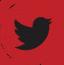 Twitter-Logo-Footer